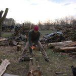 hout hakken 1 dag splijten